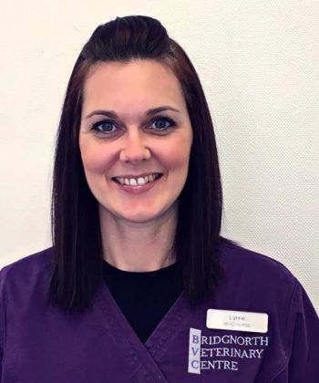 Lynne Jones RVN - Head Nurse